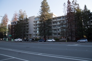 Casa de Redwood